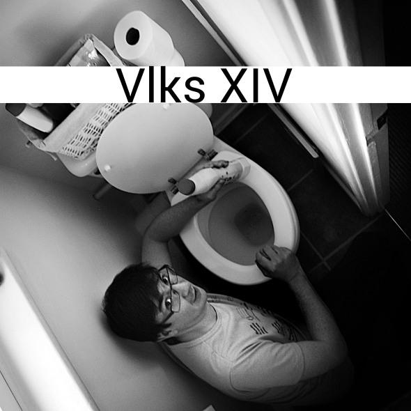 Vlks XIV artwork